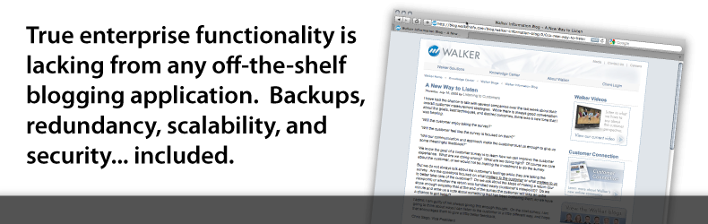 True enterprise functionality is lacking from any off-the-shelf blogging application.  Backups, redundancy, scalability, and security... included.